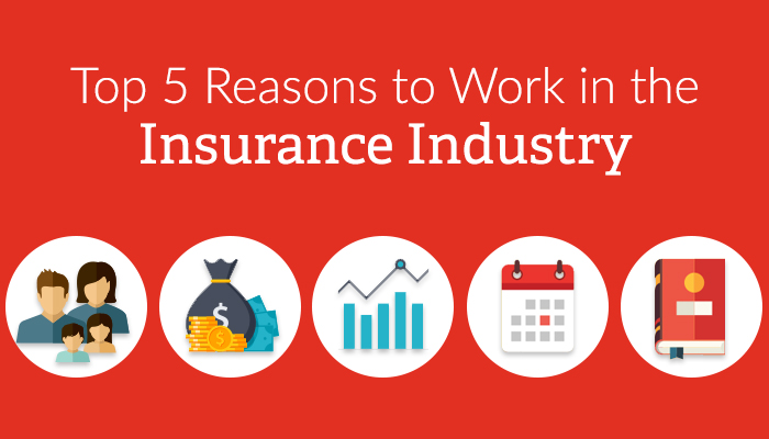 5 reasons to work in the insurance industry