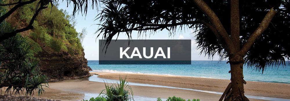 Beautiful Kauai beach scene.