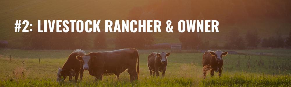 livestock rancher & owner